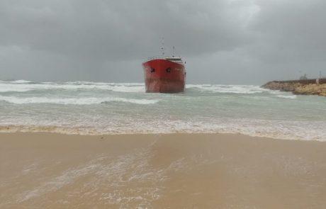 ההפתעה שחיכתה למבקרים בחופים הבוקר…