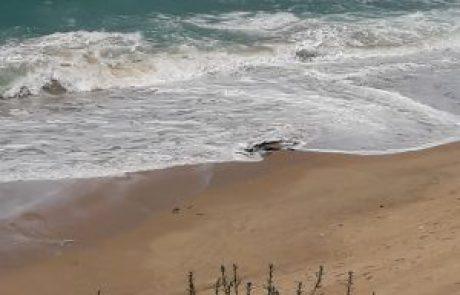 2 דייגים ב.מ. הואשמו בכך שפגעו בשמורת הטבע בדרום אשדוד לאחר שעסקו במקום בדיג לא חוקי וזוכו