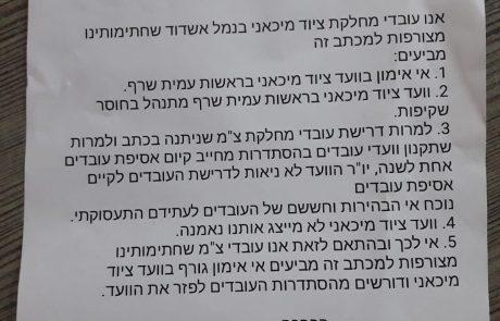 בלאגן בנמל אשדוד, כולם נגד כולם: